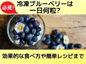 必見!冷凍ブルーベリーは一日何粒?効果的な食べ方や簡単レシピまで
