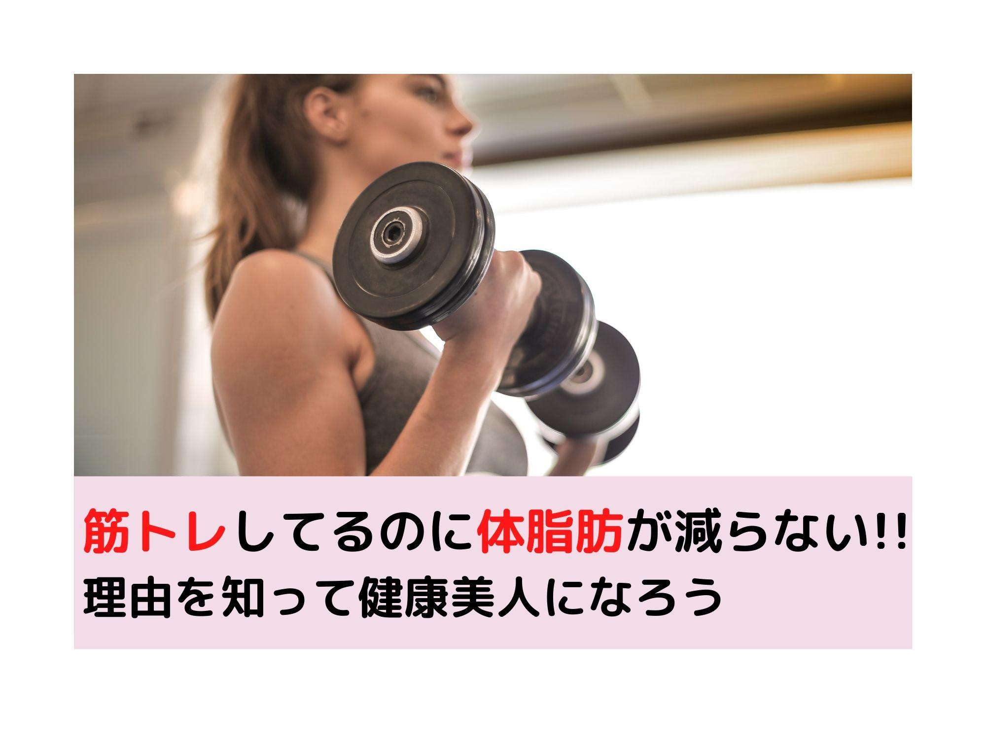 ろう トレ そう 筋 【僧帽筋の筋トレ・鍛え方10選】肩こりまで解消する効果的なトレーニング